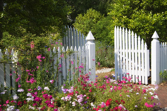 white garden gate and flowers